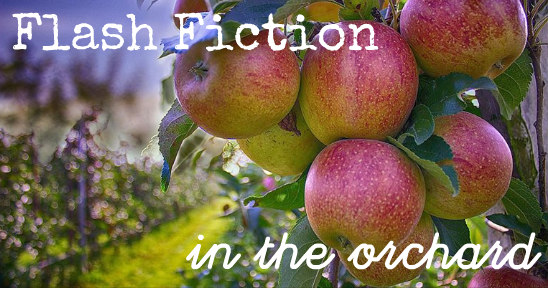 Flash Fiction in the Orchard (Armagh Festival of Food and Cider)